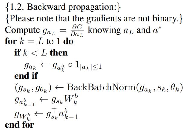 BNN Backward Propagation