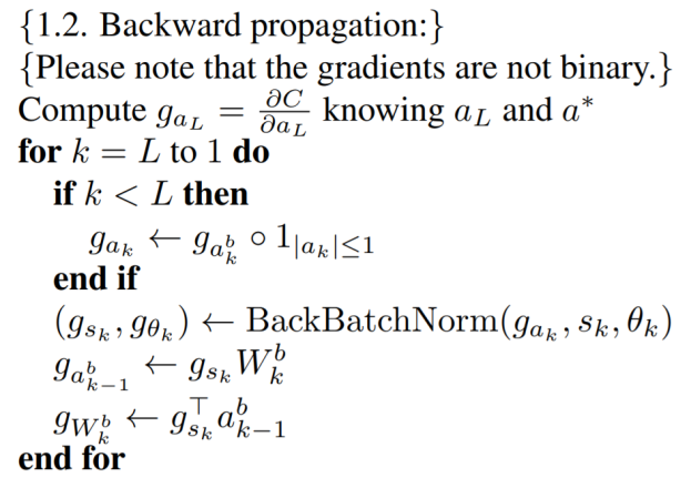 BNN Backward Propagation