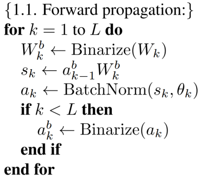 BNN Forward Propagation
